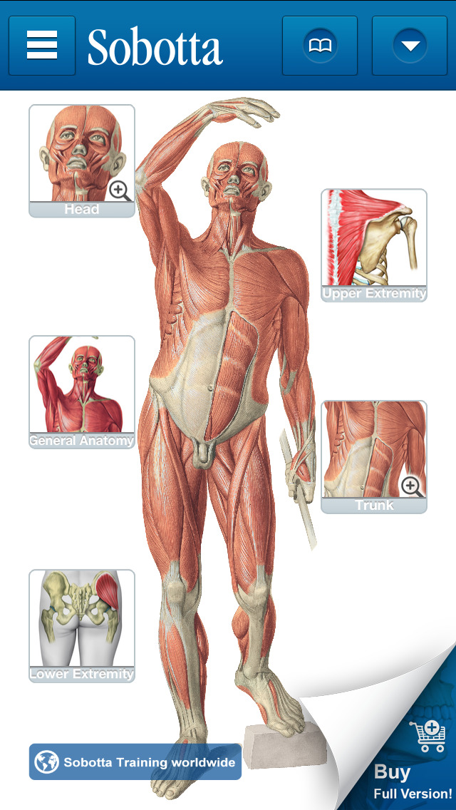 Download Sobotta Anatomy Atlas Free App Store softwares ...