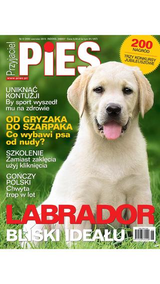 Przyjaciel Pies