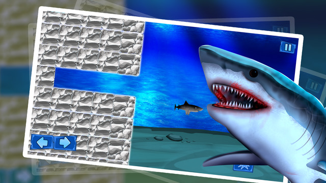 Shark Winter Emergency : The Ocean Underwater Fish Attack For Food - Gold