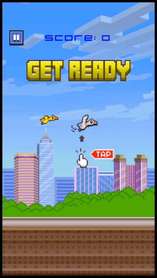 Duck Bird Flyer Game - don't hit the slide block