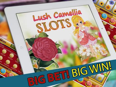 lush casino