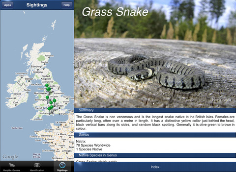 HerptileId - Reptiles and Amphibians of the British Isles iPad Screenshot 4