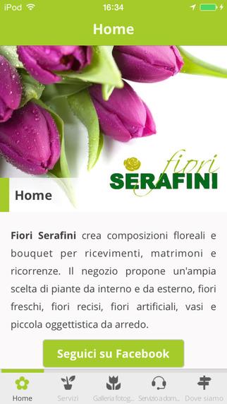 Fiori Serafini