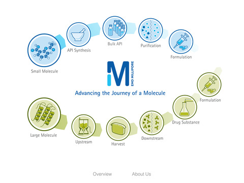 Advancing the Journey of the Molecule