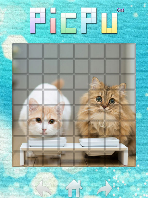 PicPu - Cat Picture Puzzle Screenshots