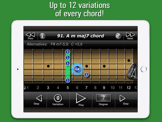 International Guitar Chords iPad Screenshot 3