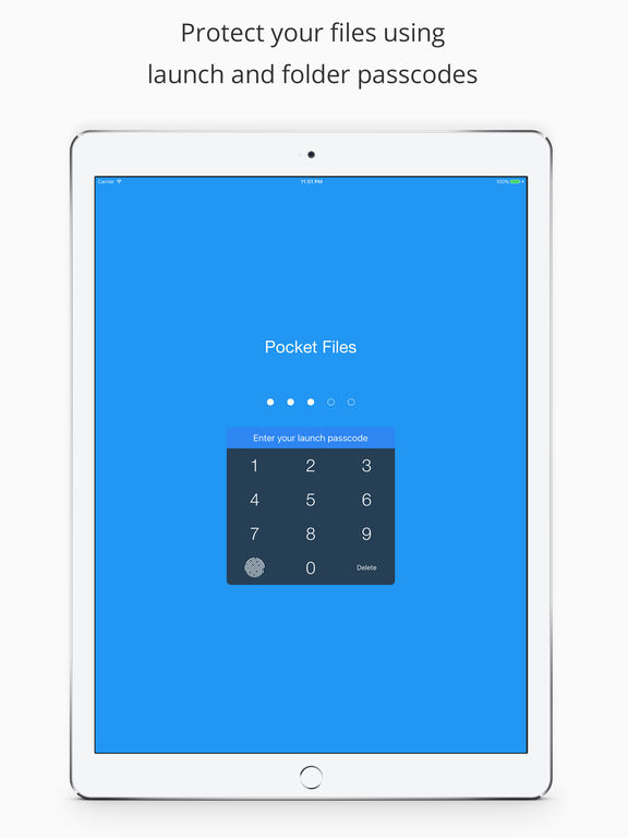 Pocket Files - Hide & lock photo, video, document Screenshot
