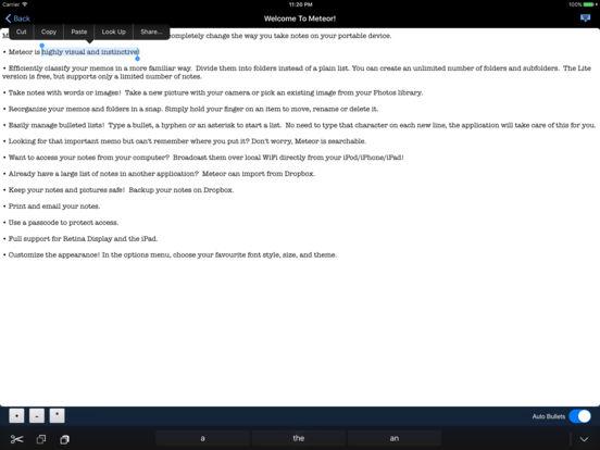 Meteor Notes Lite iPad Screenshot 2