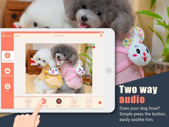 AtHome Camera Test iPad Screenshot 5