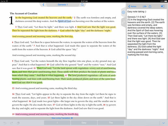 NLT Bible iPad Screenshot 4