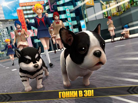 My Puppy Dog | милый собака vs аниме девушка игра на iPad
