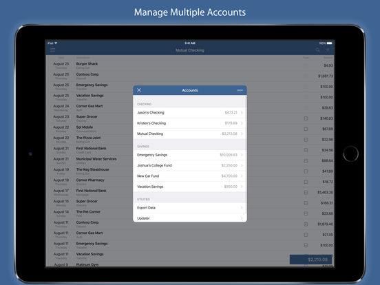 Screenshot #5 for Numero - Personal Finance Manager