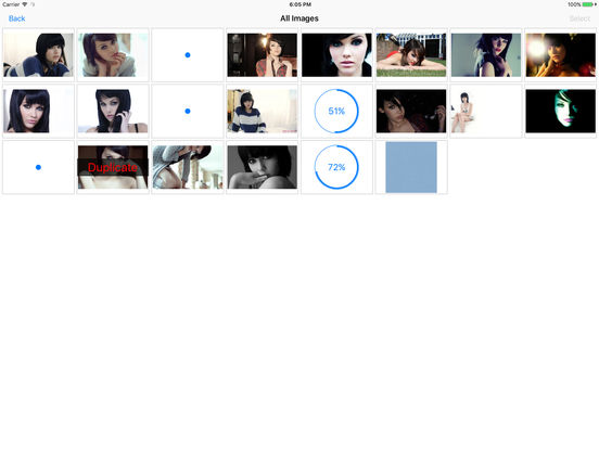 Screenshots for Photofile - Web image browser and photo downloader