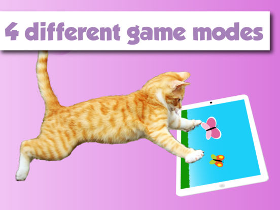 Happy Cats a game for Cats iPad Screenshot 3