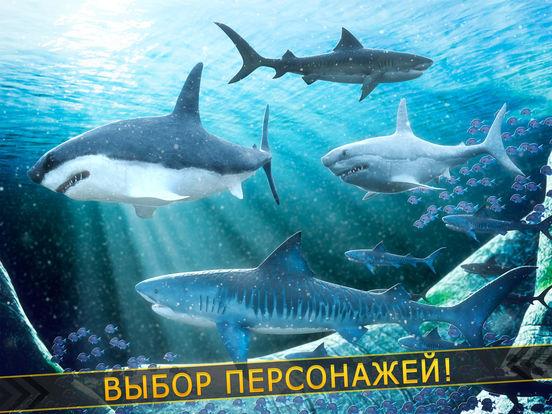 Скачать злой акула | бесплатные акулы рыбалка гонка