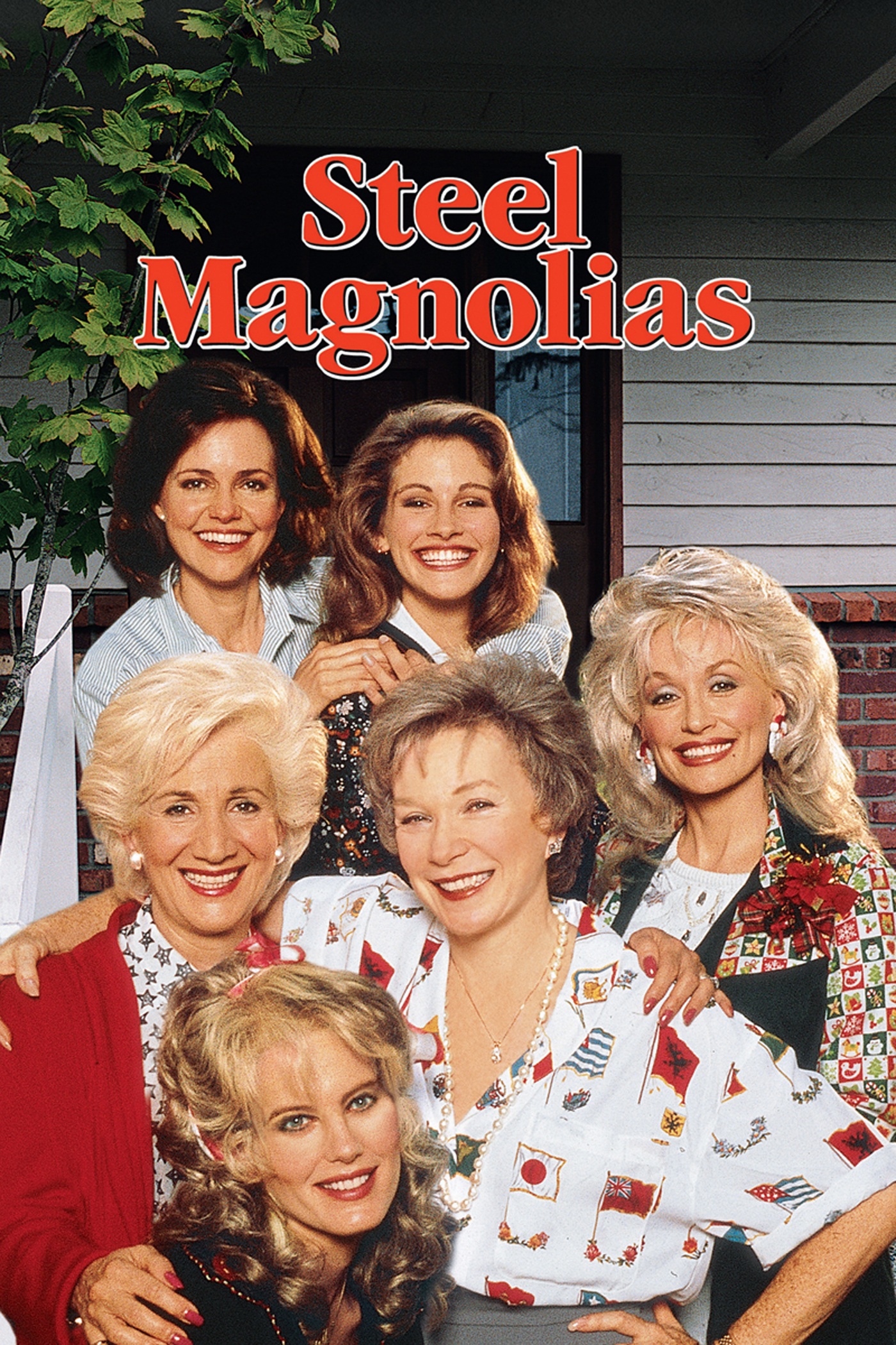 the resilience factors in a family in steel magnolias a movie by herbert ross No other movie i've seen quite captures the essense of southern living like steel magnolias this movie those factors don't strikes,herbert ross.