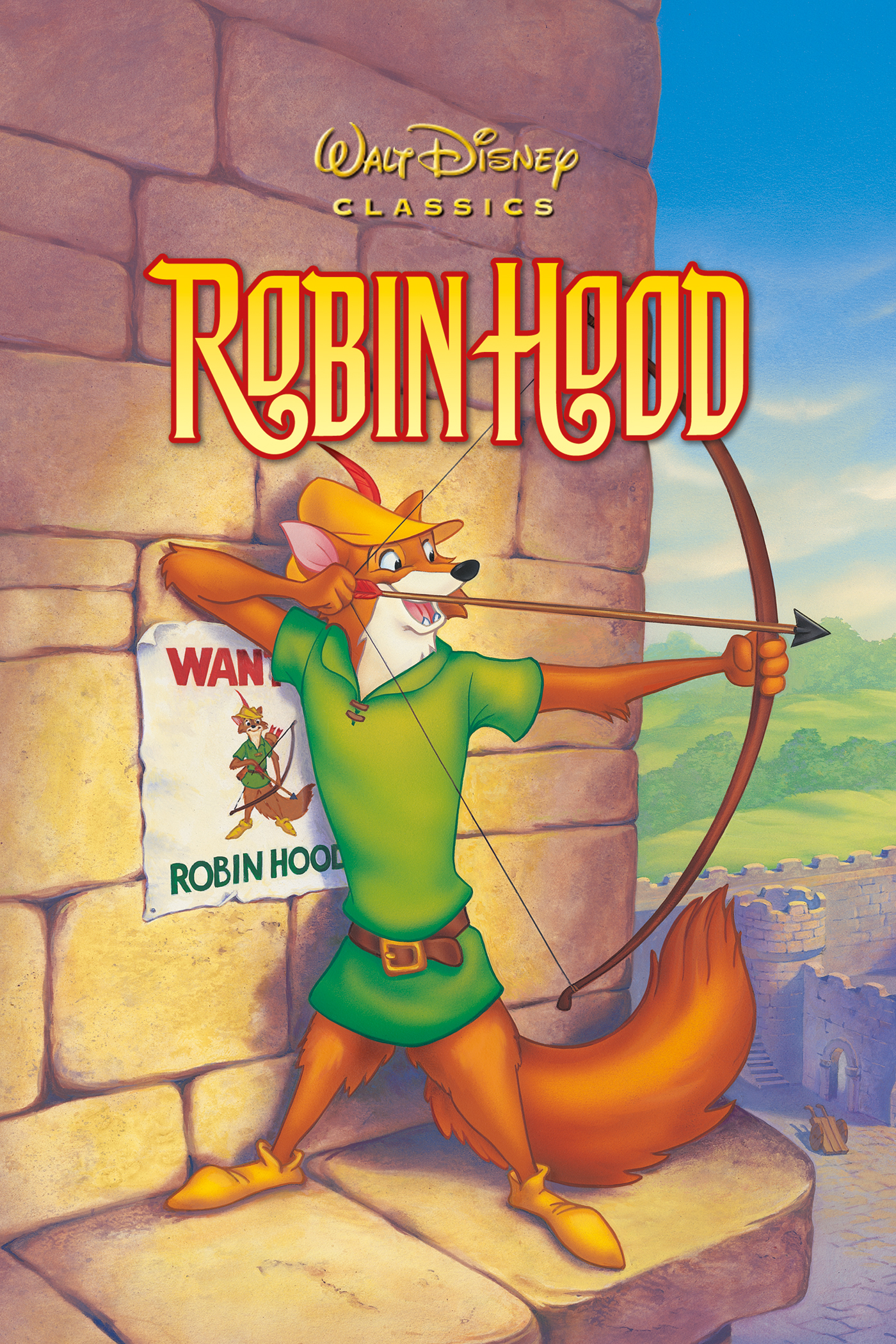 summary of robin hood story book