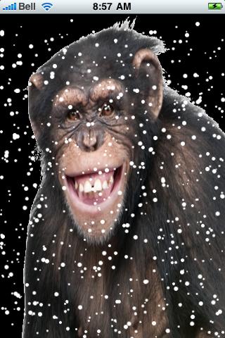 Happy Chimpanzee Snow Globe screenshot #2