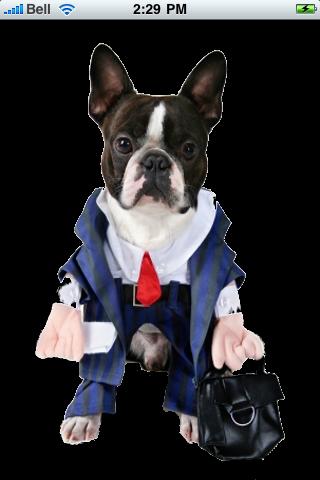 Business Man Dog Snow Globe screenshot #1