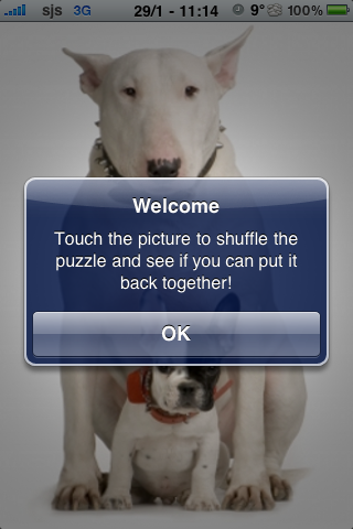 Bull Terrier with a puppy Slide Puzzle screenshot #3