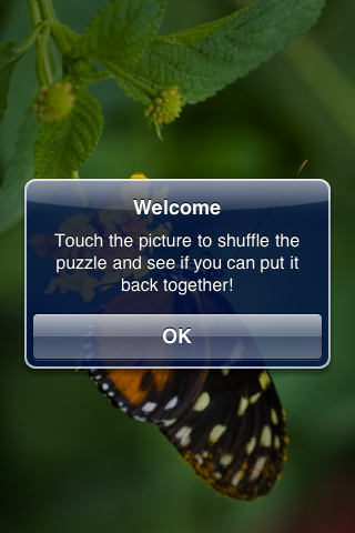 Tropical Butterfly Slide Puzzle screenshot #3
