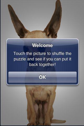 SlidePuzzle - Chihuahua screenshot #2