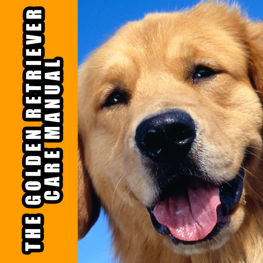 The Golden Retriever Care Manual