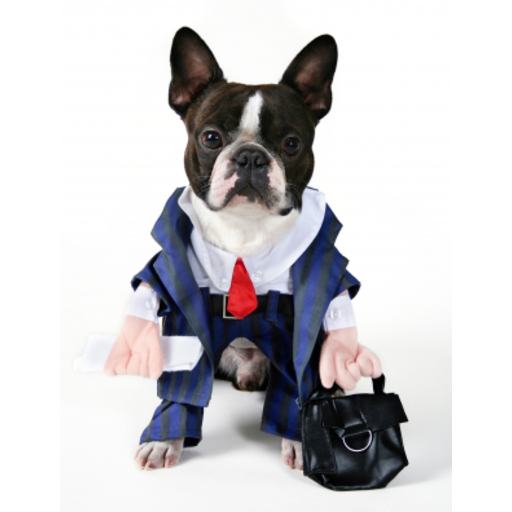 Business Man Dog Slide Puzzle