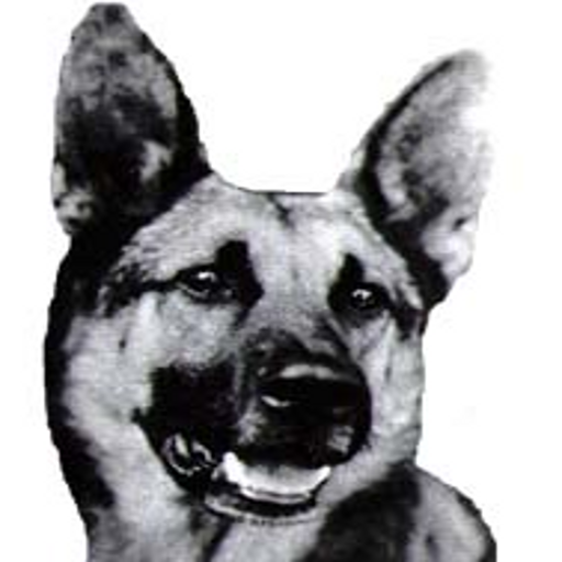 The German Shepherd Book