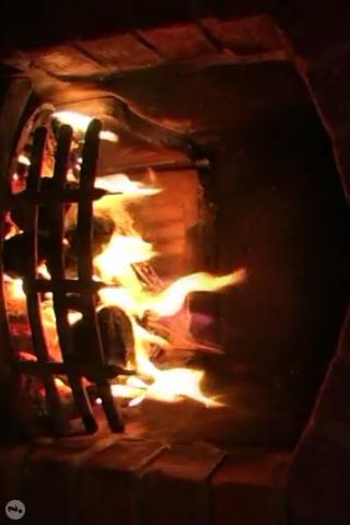 The Fire screenshot #1