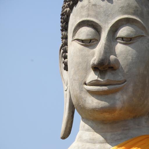 Buddhism Study Guide