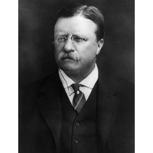 Theodore Roosevelt Study Guide