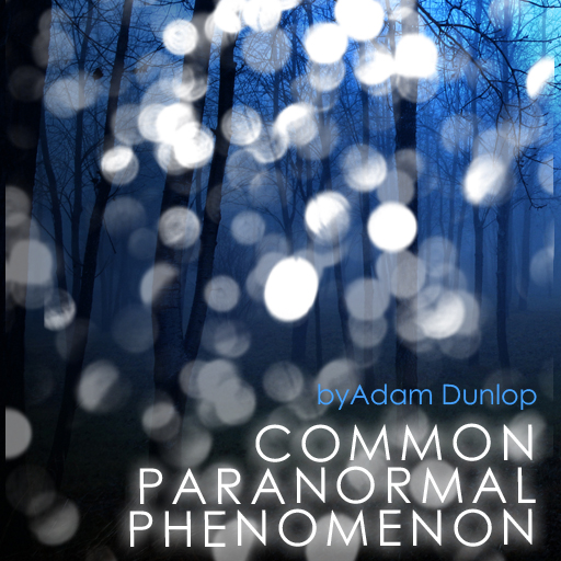 Common Paranormal Phenomenon