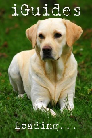 iGuides - Basics of Dog Training screenshot #1