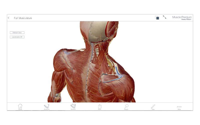 Muscle Premium screenshot 1