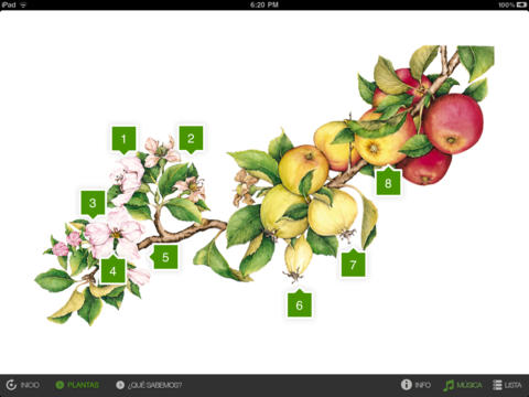 Plants and Flowers. Visual Encyclopaedia of Questions screenshot 4