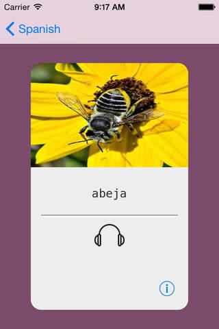 Learning Spanish (European) Basic 400 Words - náhled