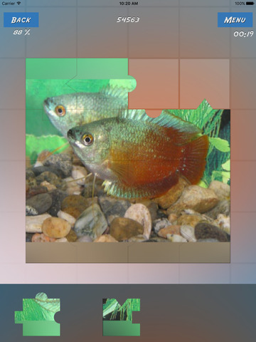Puzzles Fishes screenshot 7