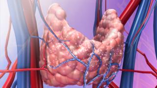 Physiology Animations screenshot 5