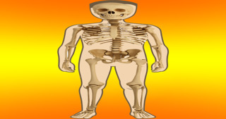 Body Parts - Internal screenshot 1