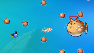 Bomb Fish 2014 screenshot 2
