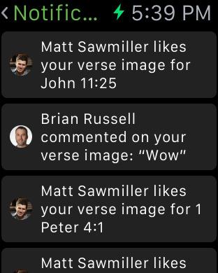 Bible screenshot 15
