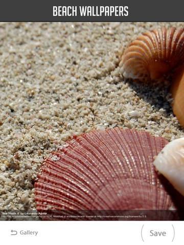 Beach Wallpaper screenshot 8