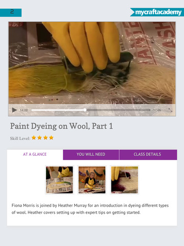 Paint Dyeing on Wool screenshot 9