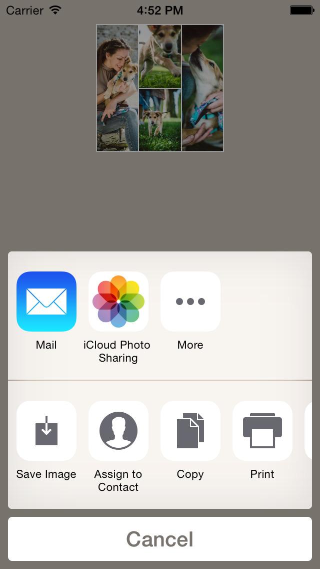 Diptic PDQ screenshot 5