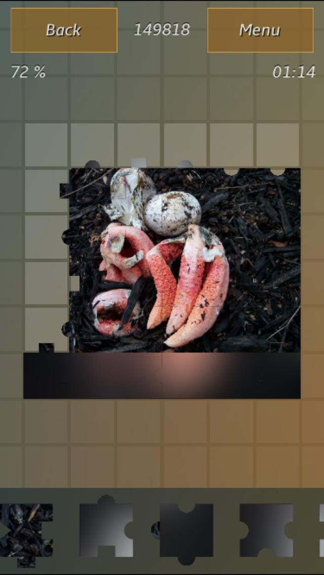 Mushrooms Jigsaw Puzzles screenshot 5