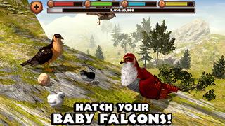 Falcon Simulator screenshot 5