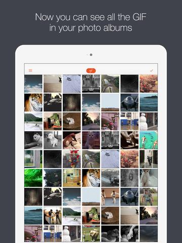 GIF Viewer - The GIF Album screenshot 6