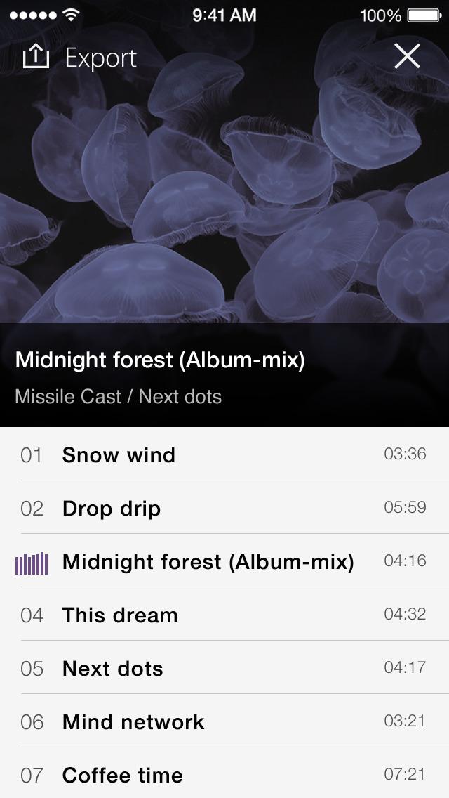 PSOFT Audio Player screenshot 5