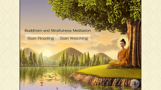 Buddhism and Mindfulness Meditation screenshot #1